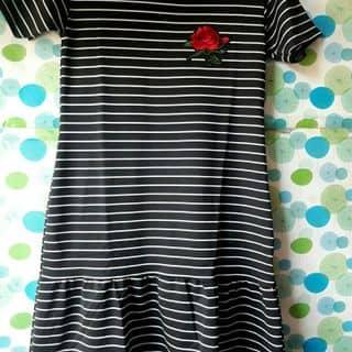 Váy của sileaoquan1 tại Quảng Trị - 3706449