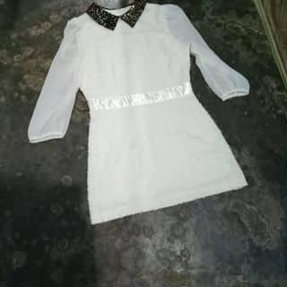 Váy của nganheo10 tại Kon Tum - 2773246