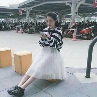 Váy công chúa  2017 của dangtuthanh tại Trà Vinh - 3598799