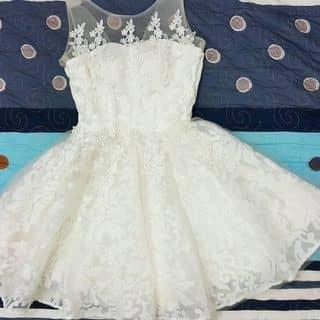 Váy ren xòe công chúa của daviato tại Quảng Ngãi - 3542760