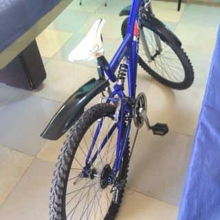 Xe đạp của daotiendung2590 tại Hà Tĩnh - 1572253