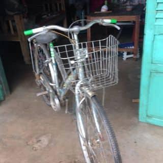 Xe đạp dàn đề của dangngocthuongs tại Trà Vinh - 3321078