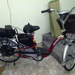 Xe đạp điện asama của nhung178 tại Hồ Chí Minh - 3465142