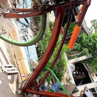 XE đạp drang màu dã gỗ nha  của nguyentrunghieu129 tại Đồng Tháp - 3627171