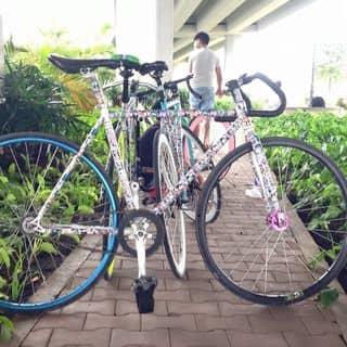 Xe fixgear của lephi39 tại Hồ Chí Minh - 3643795