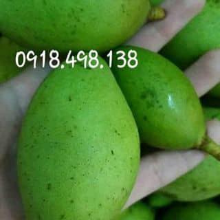 Xoài non của hacnga tại 274/37 Nguyễn Văn Lượng, Quận Gò Vấp, Hồ Chí Minh - 3844126